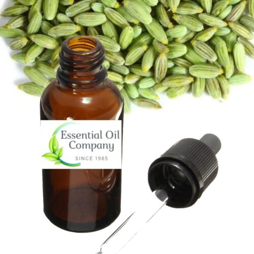 Buy Wholesale Fennel Sees Essential Oil from India Manufacturer