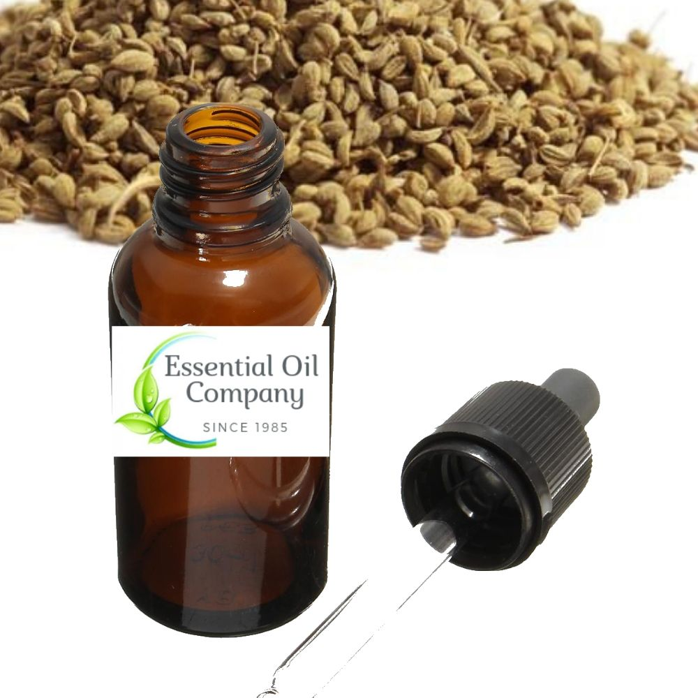 Ajowan Essential Oil Manufacturer & Exporter - Buy Wholesale