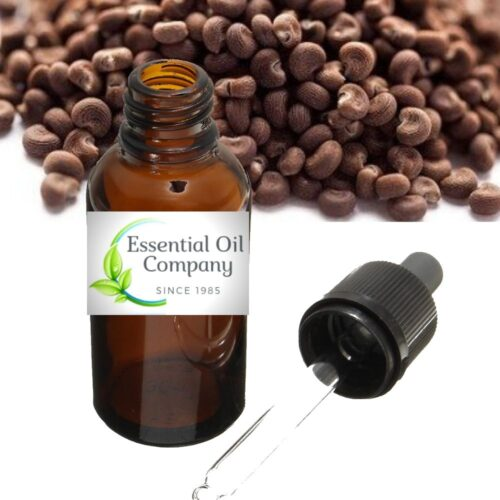 Ambrette Seed Essential Oil Buy Wholesale Manufacturer India