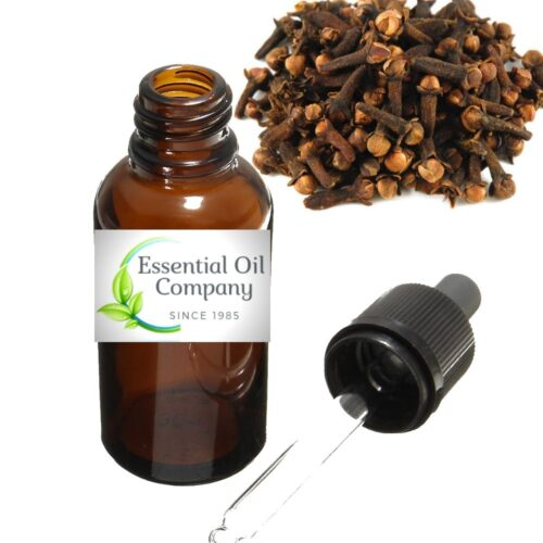 Clove Bud Essential Oil Manufacturer India Buy Wholesale