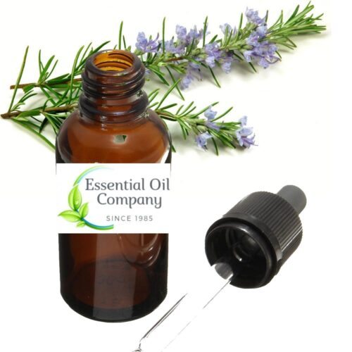 Rosemary Essential Oil Wholesale Manufacturer India