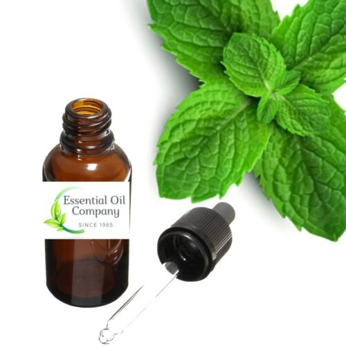 Peppermint Essential Oil Manufacturer India - Buy Wholesale Online