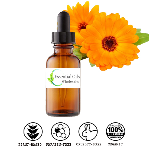 buy calendula floral absolute oil wholesale