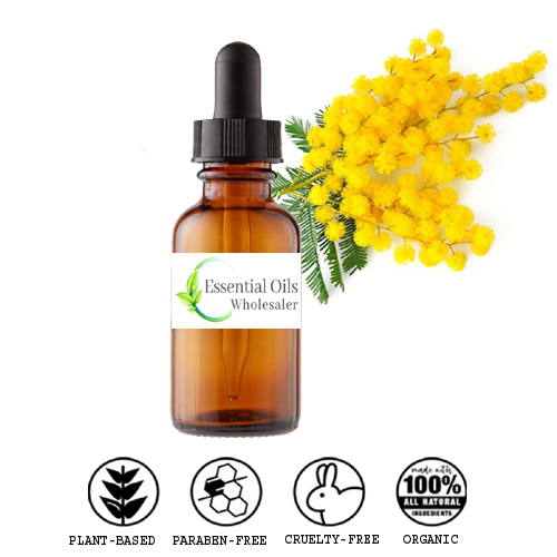 buy mimosa floral absolute oil wholesale