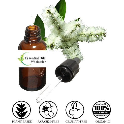 buy niaouli essential oil wholesale