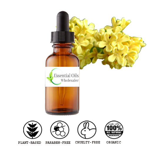 buy osmanthus floral absolute oil wholesale