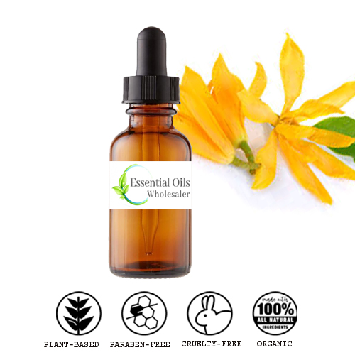 buy yellow champaca floral absolute oil wholesale
